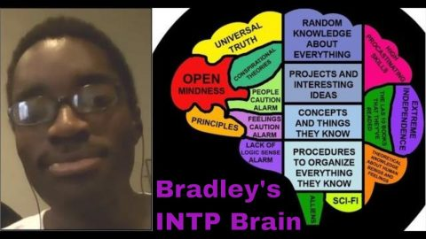 TiNx (INTP): SPOOF Brain Map (with Bradley: E594 Sp-Sx, Socionics LII)